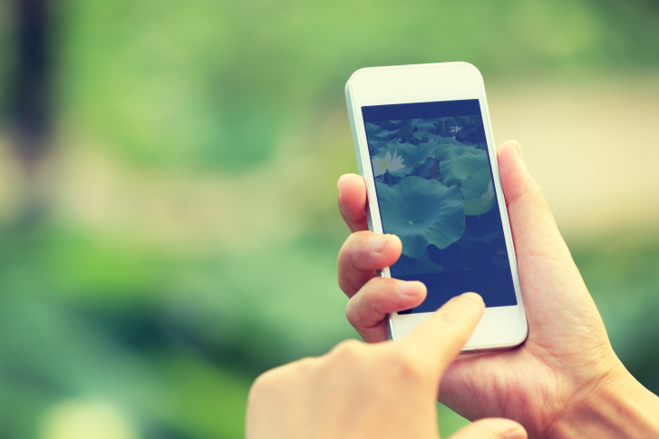 user on mobile using webrtc