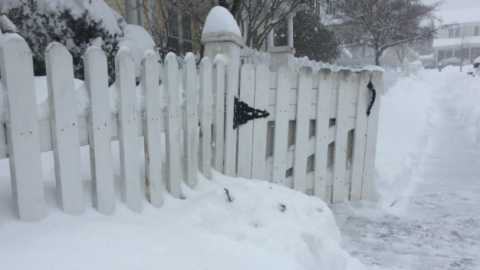 Live Streaming the Snowpocalypse with WebRTC