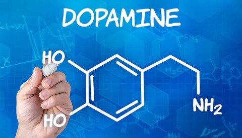 Developer Dopamine