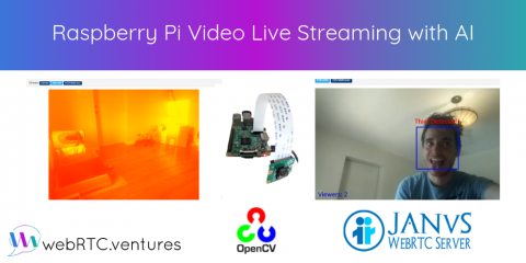 Raspberry Pi Video Live Streaming with AI