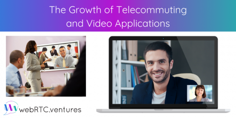 The Growth of Telecommuting and Video Applications