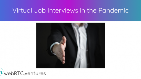 Virtual Job Interviews in the Pandemic