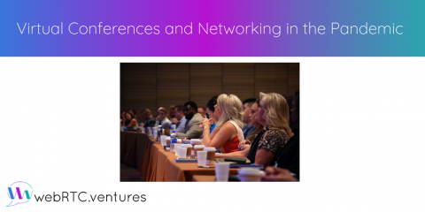 Virtual Conferences and Networking in the Pandemic