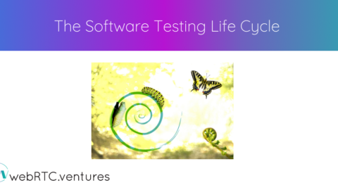 The Software Testing Life Cycle